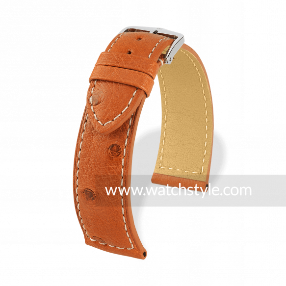 Hirsch Classico Gold Brown